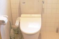 トイレのシロアリ・腐朽による床の崩落を再建し洋式化